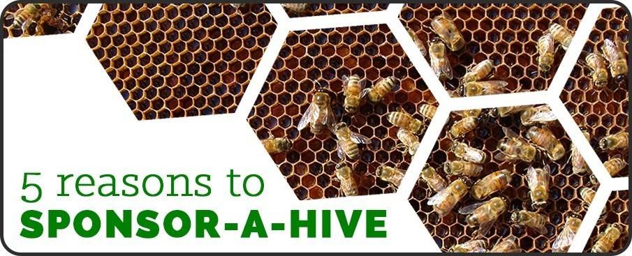 Sponsor-a-Hive 5 reasons